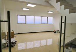 豪德银座顶层复式精装200平米5室3厅2卫出租
